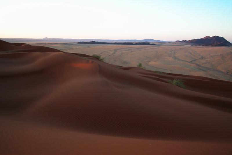 dune elim