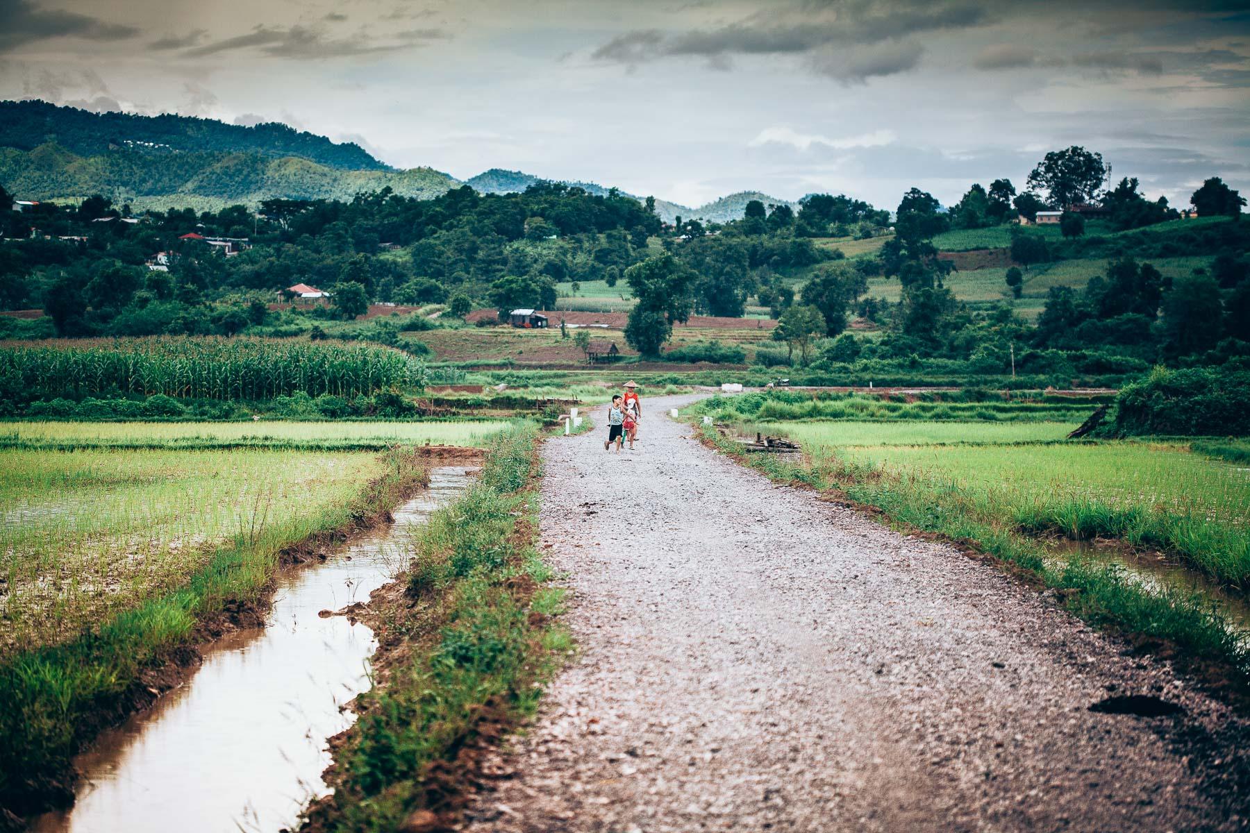 chemin d'après la pluie
