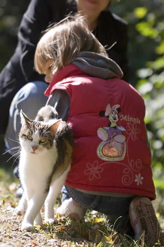 la souris et le chat